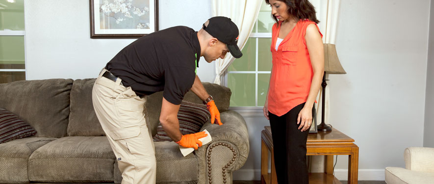 Lahaina, HI carpet upholstery cleaning