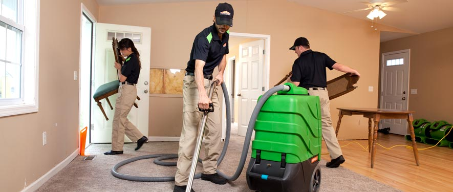 Lahaina, HI cleaning services